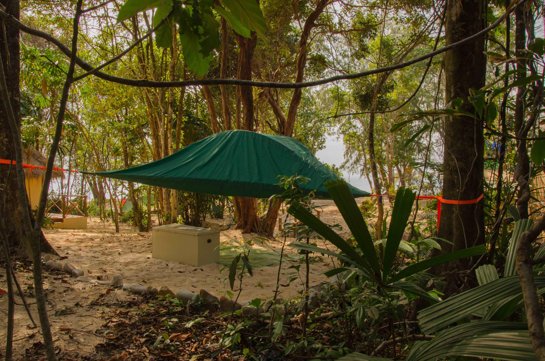The bungalow Tree Tent & Sleeping Trees